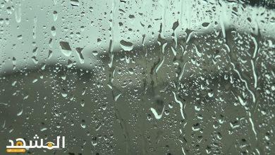 صورة ماذا يحدث عندما تصبح قطرات الماء وبلورات الثلج كبيرة فلا يستطيع الهواء حملها