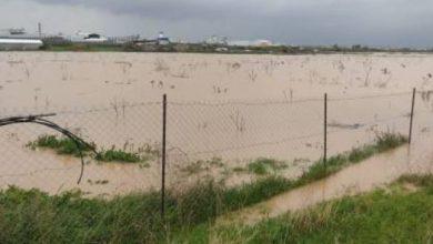 صورة الاحتلال يغرق مئات الدونمات الزراعية بمياه الأمطار شرق غزة
