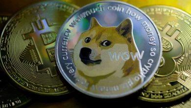 صورة EasyDNS تبدأ بقبول Dogecoin كوسيلة للدفع