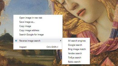 أفضل إضافات معرفة مصدر الصورة عبر المتصفح