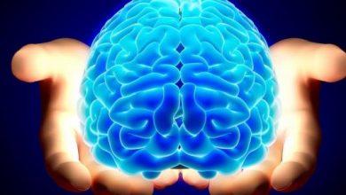 صورة عادات يومية بسيطة لكنها ذات تأثير كبير على تنشيط الدماغ
