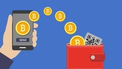 ما هي أنواع محافظ العملات الرقمية المشفرة وأيهما مناسب لك؟