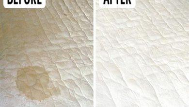 صورة تنظيف المراتب والمفروشات والقضاء على أصعب البقع بمكون بسيط