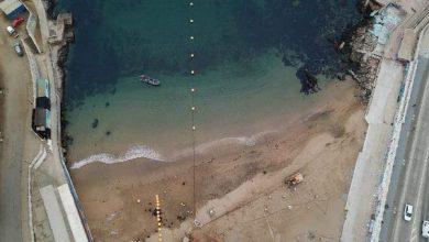 جوجل تعزز خدماتها السحابية عبر الكابل البحري Firmina
