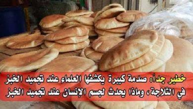 صورة خطورة تجميد الخبز في الفريزر يسبب السرطان وهذه الطريقة الصحيحة للتخزين