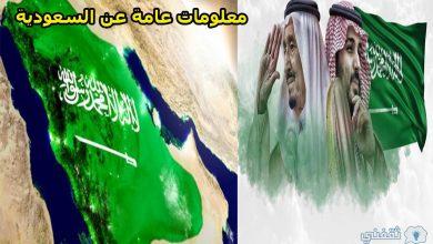 صورة معلومات عامة عن المملكة العربية السعودية وأهم ما يميزها عن بلدان العالم