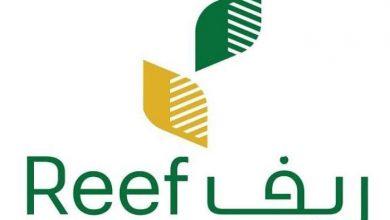 صورة خطوات التسجيل في منصة ريف reef الإلكترونية لدعم المزارعين