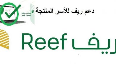 صورة reef.gov.sa رابط تسجيل دخول برنامج ريف للدعم المادي وخطوات إنشاء حساب جديد وتقديم طلب مستفيد