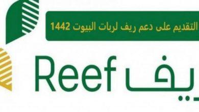 """صورة """"برنامج ريف"""" رابط تسجيل دعم ريف الأسر المنتجة reef.gov.sa الكترونياً"""