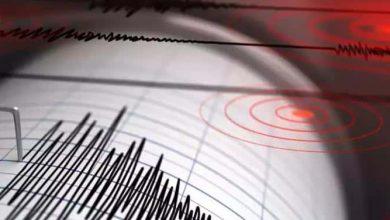 كيف تساهم الهواتف الذكية في تجنب أخطار الزلازل