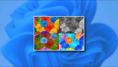 استخدام تأثيرات الألوان في ويندوز 11 للمصابين بعمى الألوان
