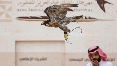 رابط منصة معرض الصقور والصيد السعودي 2021 /1443 وطرق التواصل والشراء
